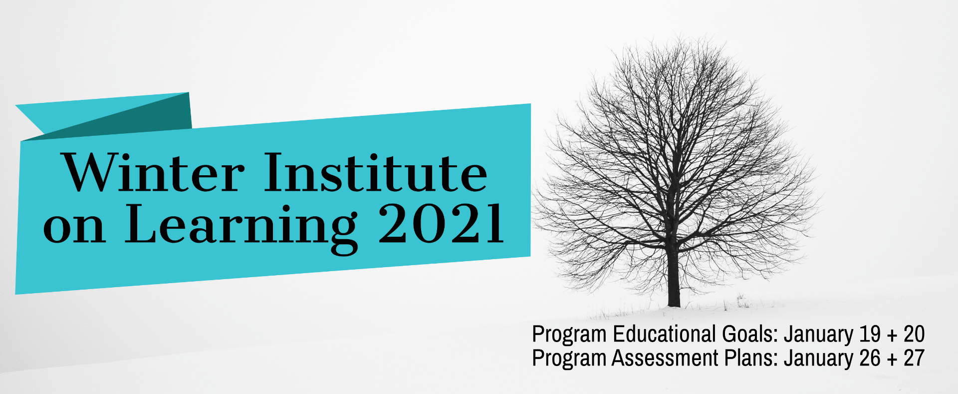 Winter Institute on Learning 2021