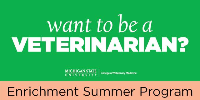 MSU Summer Enrichment Program