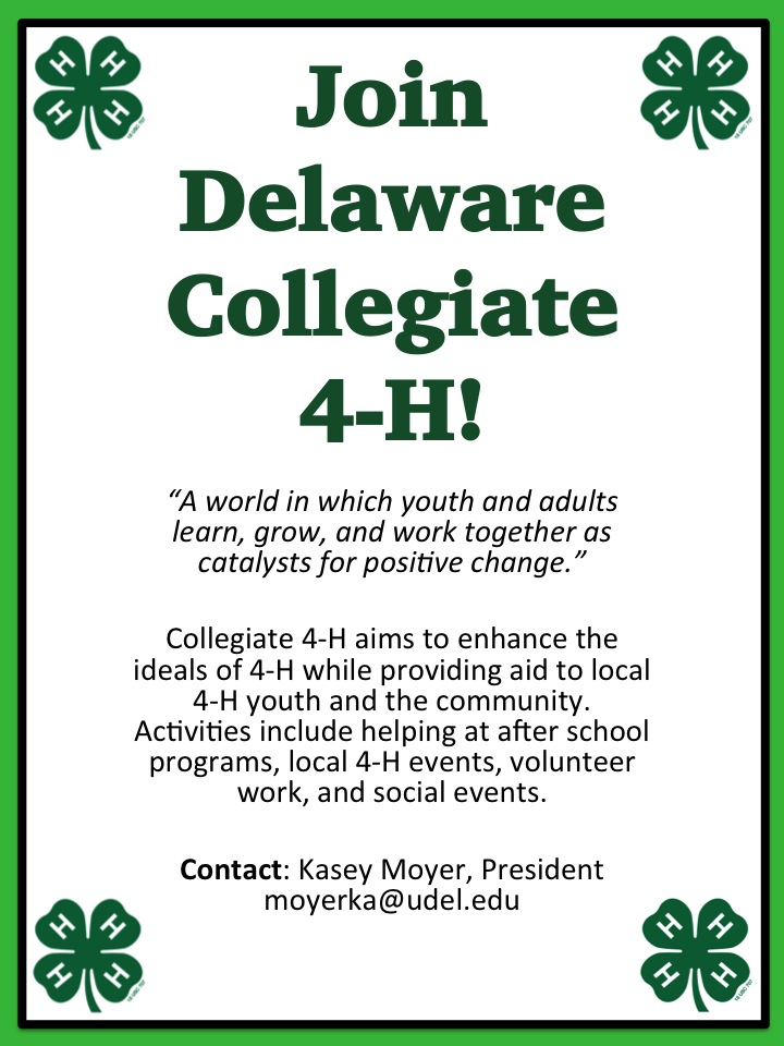 Collegiate 4-H
