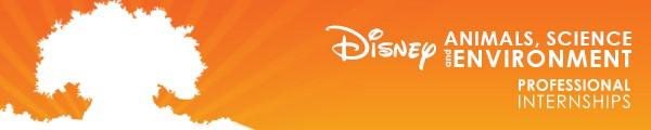 Disney AS&E