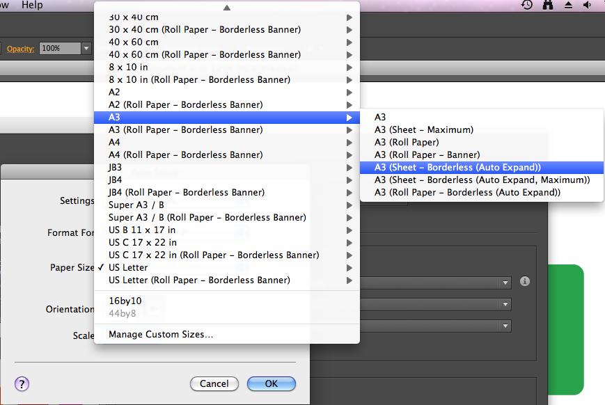 print custom paper size adobe pdf