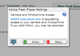 Flash setting to allow webcama dn microphone.
