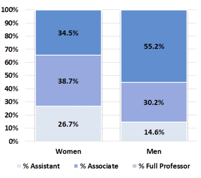 Chart showing the percentage of male and female tenured and tenure track faculty at UD as of 2017
