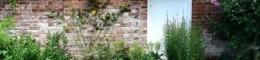Baseline magazine exterior Elizabeth Roche 14J London VC sm