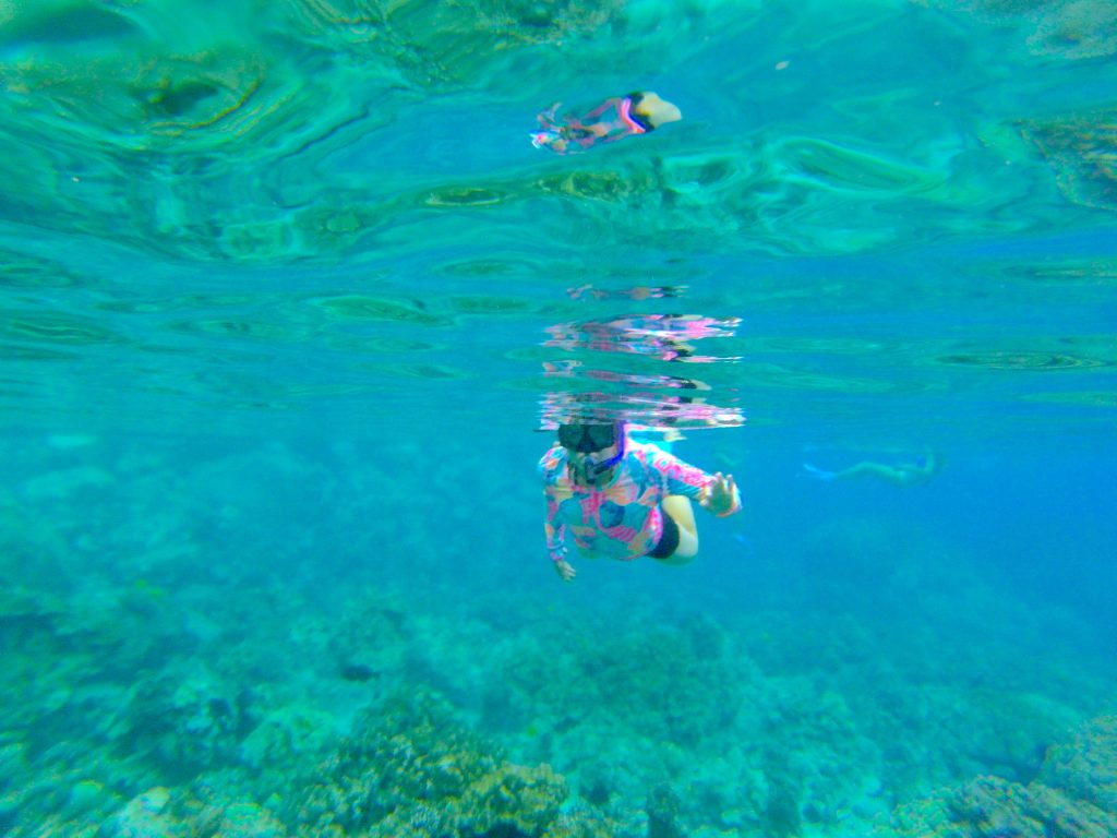 Ud Study Abroad >> Extraordinary Experiences in Hawaii | UD Abroad Blog