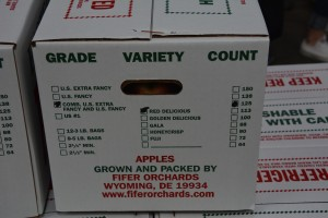we experienced first hand what an apple line looks like and how they are categorized by grade, variety, and count