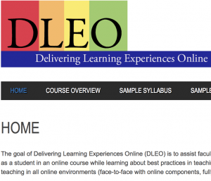 Delivering Learning Experiences Online