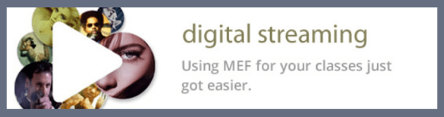 Digistream logo