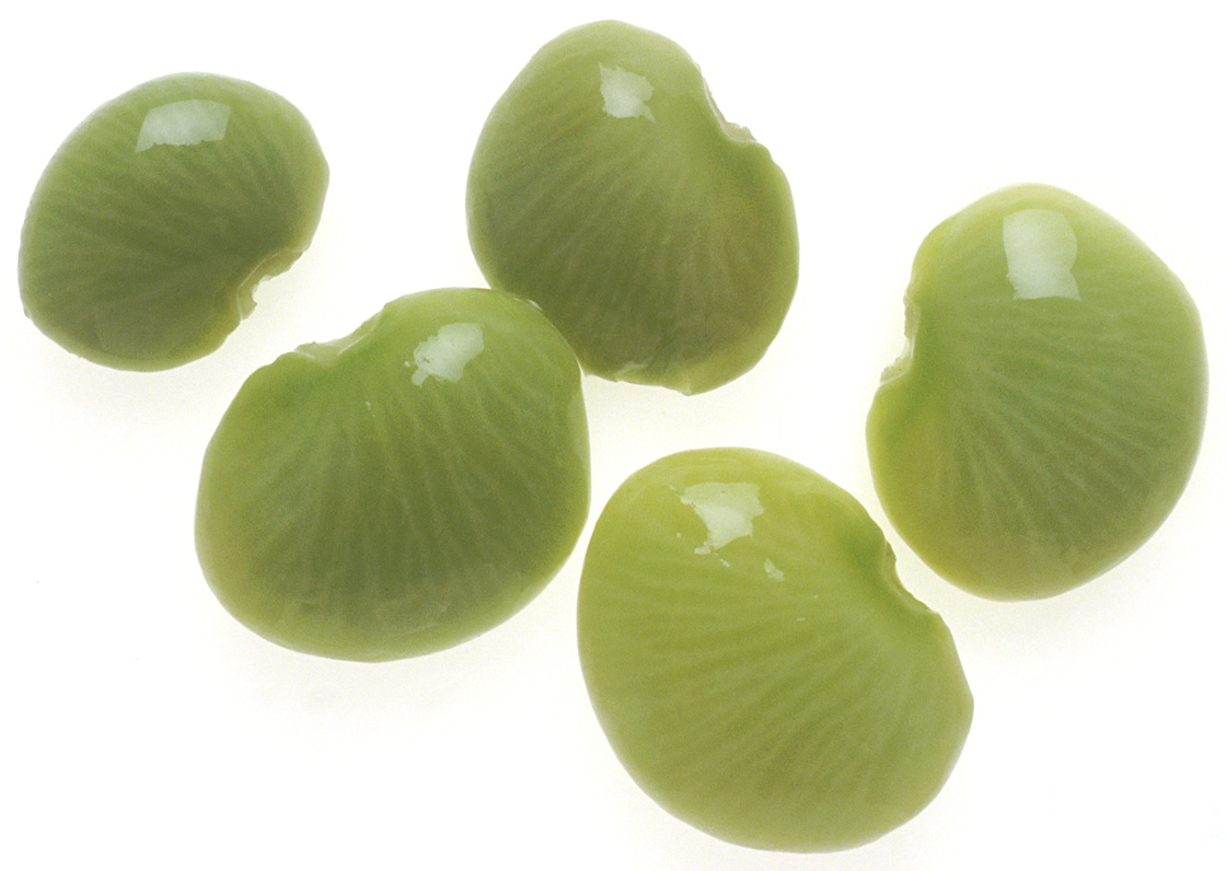 Image Result For Ford Hook Lima Beans