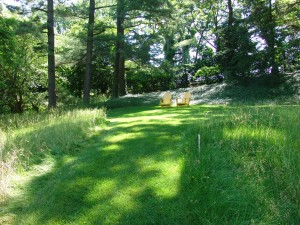 This attractive combination of lawn and meadow at Chanticleer Gardens in Wayne, PA, shows lawn used as a means of circulation and as a gathering space.