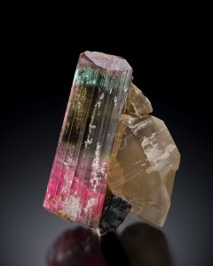 Elbaite (Tourmaline group) and quartz Himalaya Mine, Mesa Grande District, San Diego County, California 3 ¼ inch x 5 inch