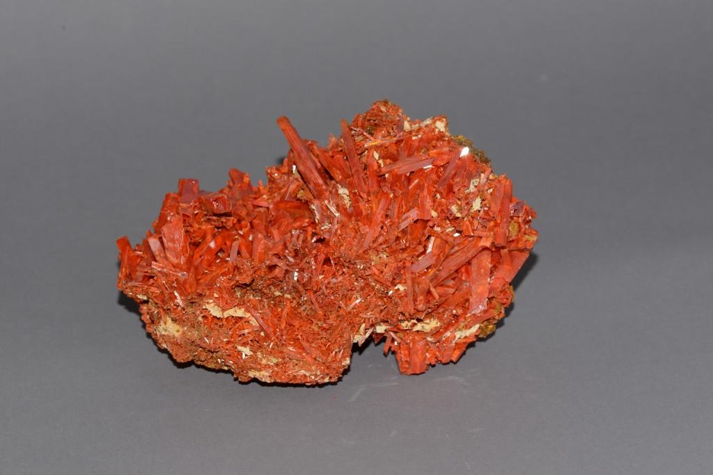 Crocoite, Adelaide Mine, Tasmania, Australia (3 ½ inches x 5 ¾ inches)