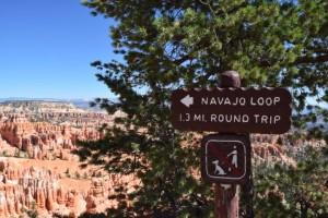 navajo-loop