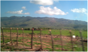 The view from my window seat. As we drove we saw green pastures and fields give way to a more arid landscape.