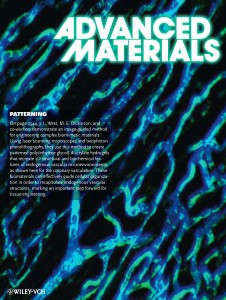 006-Three-Dimensional Biomimetic Patterning in Hydrogels-Cover