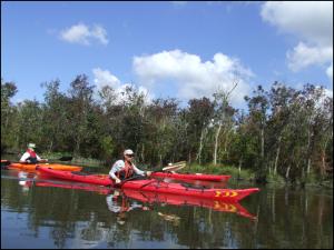 Kayaking in Delaware