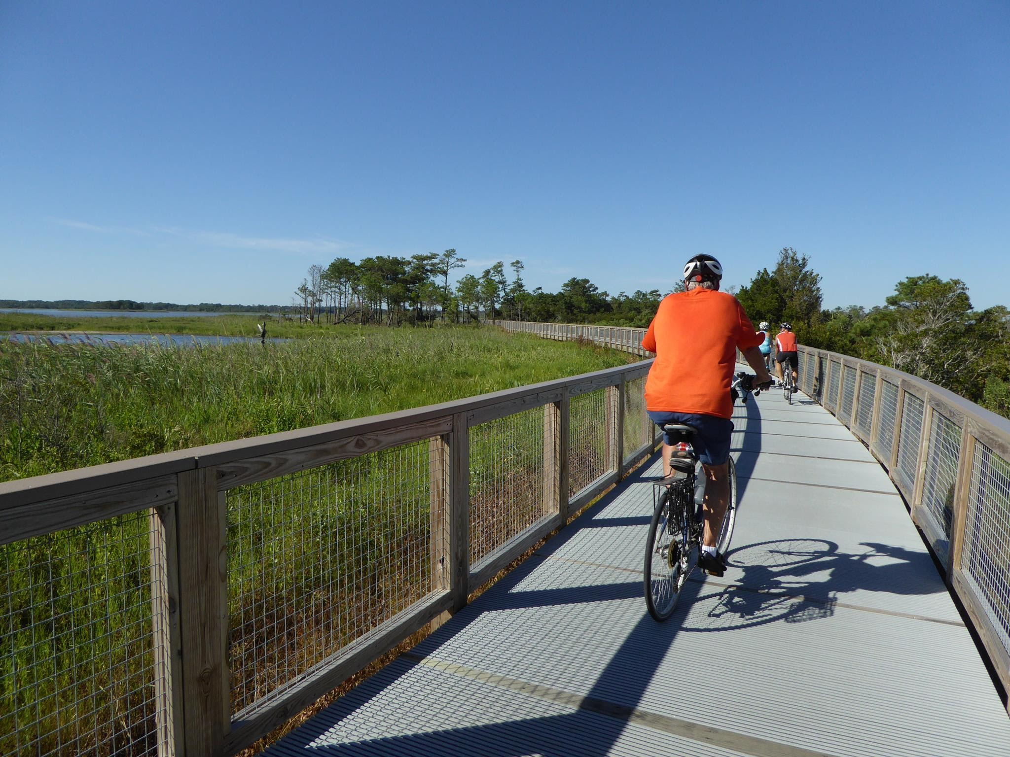 Bicycle riding on the Delaware Track on the Delaware Bayshore Byway