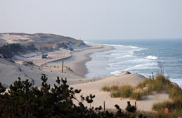 Cape Henlopen State Park on the Historic Lewes Byway
