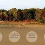 Rural Land Management