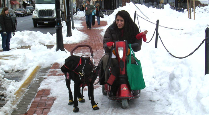 Young adult in a motorized wheel chair with her service dog, struggles to navigate the poorly plowed streets.