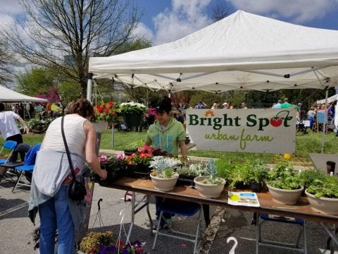 Image showing that Bright Spot Farms participates in Ag Day at the University of Delaware.