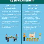 This is an infographic illustrating the benefits of community supported agriculture for communities and farmers. Benefits for the community include supplying fresh food regularly, providing a variety of produce, introducing novel cooking methods, fostering relationships with local farmers, and returning spending to the local economy. Benefits for farmers include creating a steady source of income because purchases are made in advance, fostering relationships with community members, developing purchasing loyalty among customers, and spreading awareness of the importance of local agriculture.