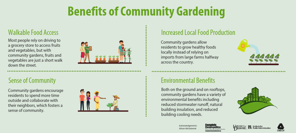 This is an infographic illustrating four major benefits of community gardening. The first benefit is increased local food production. Community gardens allow residents to grow healthy foods locally instead of relying on imports from large farms halfway across the country. The second benefit is walkable food access. Most people rely on driving to a grocery store to access fruits and vegetables, but with community gardens, fruits and vegetables are just a short walk down the street.The third benefit is a sense of community. Community gardens encourage residents to spend more time outside and collaborate with their neighbors, which fosters a sense of community. Lastly, community gardens have environmental benefits. Both on the ground and on rooftops, community gardens have a variety of environmental benefits including reduced stormwater runoff, natural building insulation, and reduced building cooling needs.