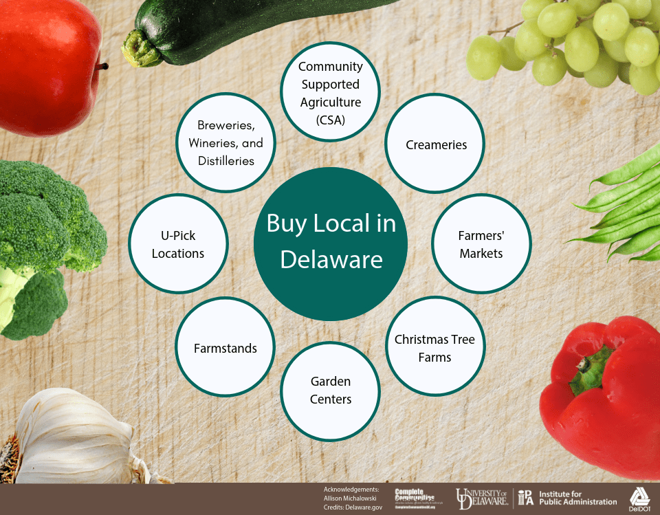 An infographic listing the types of organizations included in the Delaware Buy Local Guide. The Guide includes community supported agriculture, creameries, farmers' markets, breweries, wineries, distilleries, u-pick locations, farmstands, garden centers, and Christmas tree farms.