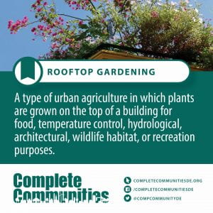 Rooftop Gardening. A type of urban agriculture in which plants are grown on the top of a building for food, temperature control, hydrological, architectural, wildlife habitat, or recreation purposes.