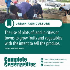 Urban Agriculture. The use of plots of land in cities or towns to grow fruits and vegetables with the intent to sell the produce.