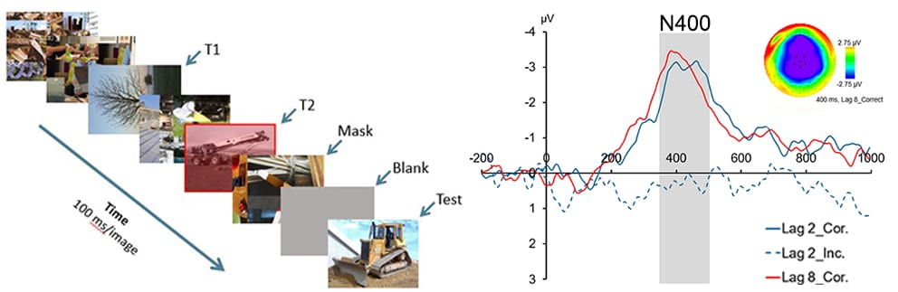 Research | Visual Cognition Lab