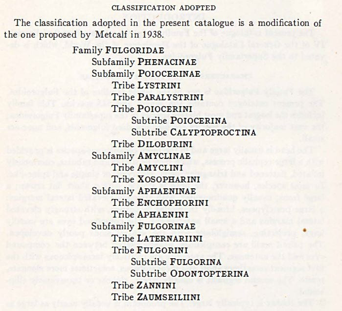 Classification of Fulgoridae from Metcalf (1947)