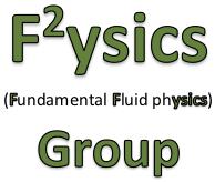 F^2ysics Group