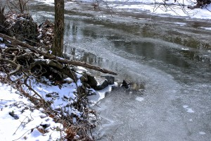 An Icy Bend in the River, by Laura George, February, 2014