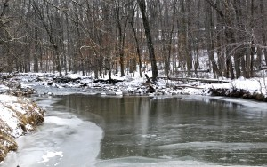 White Clay Creek, Winter 2014, by Laura George