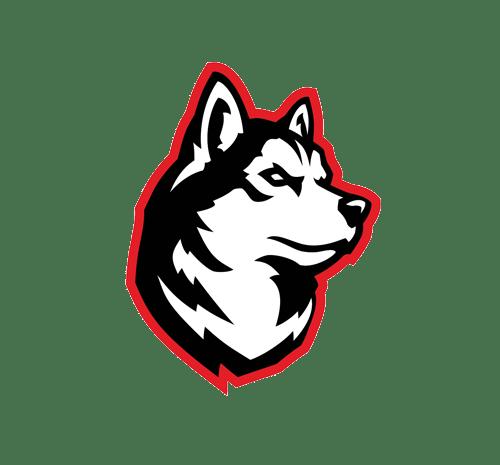 Northeastern Esports logo