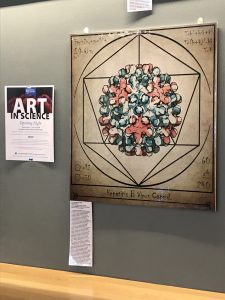 Vitruvian HBV Capsid on Display