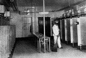 """Figure 6. """"One of New York's Comfort Stations."""" from Donald B. Armstrong, """"Public Comfort Stations: Their Economy and Sanitation,"""" The American City 11, no. 2 (Aug., 1914): 95."""