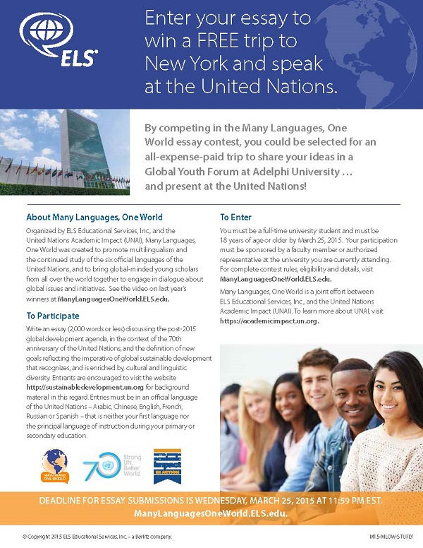 Essay about united nations