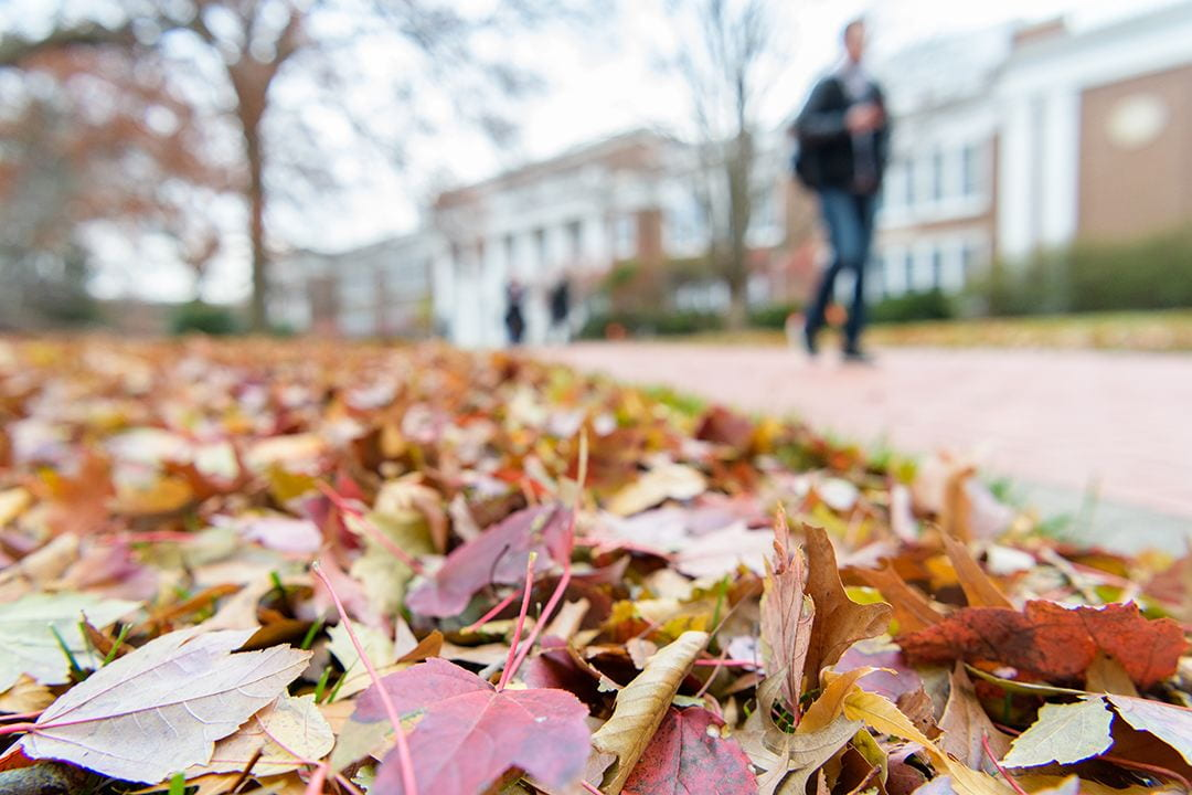 Fall leaves on the ground in front of Pearson Hall