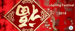 Spring Festival 2018 Highlights