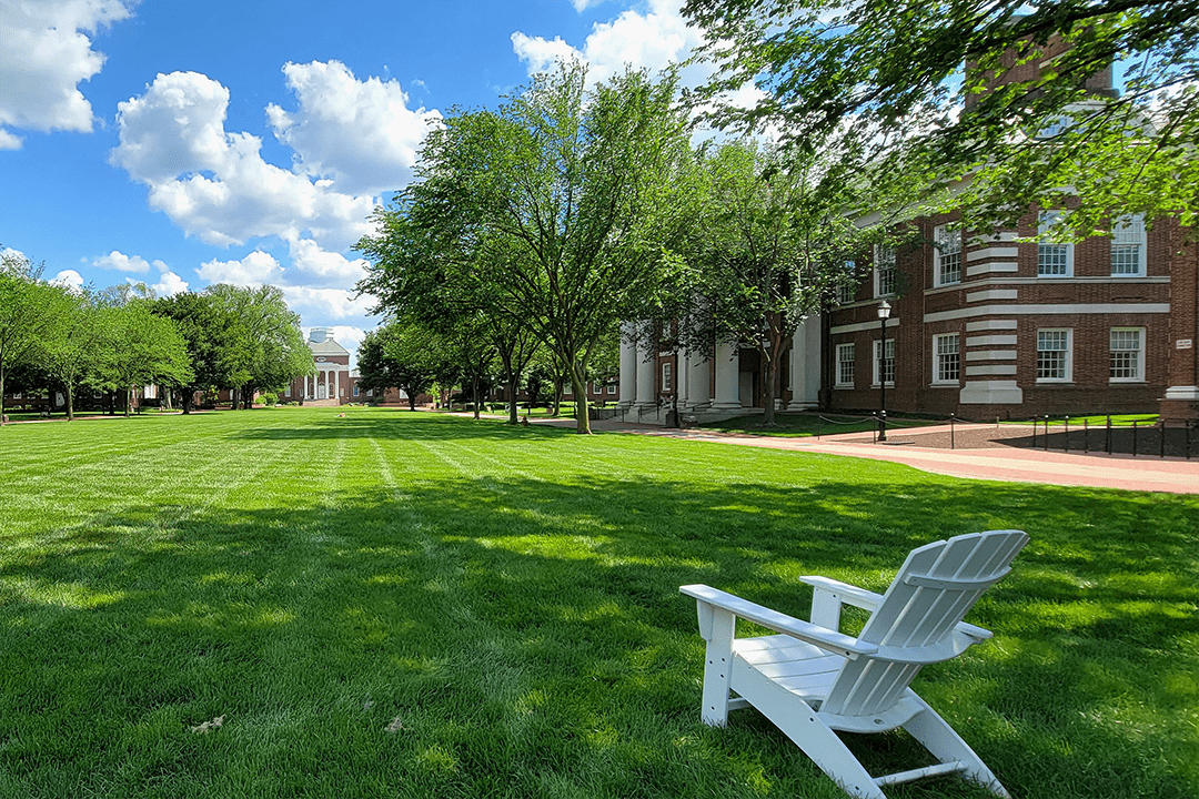 Summer on The Green