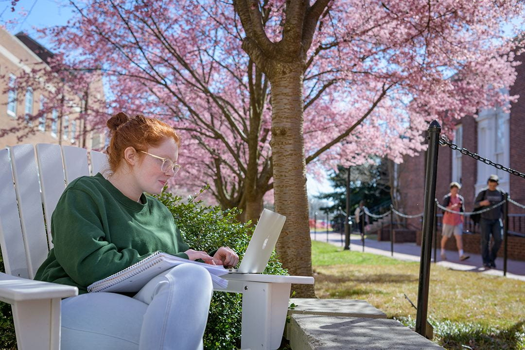 Student working on a laptop in front of a spring blooming tree