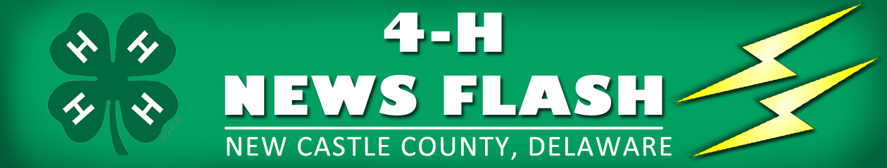 New Castle County 4-H News Flash