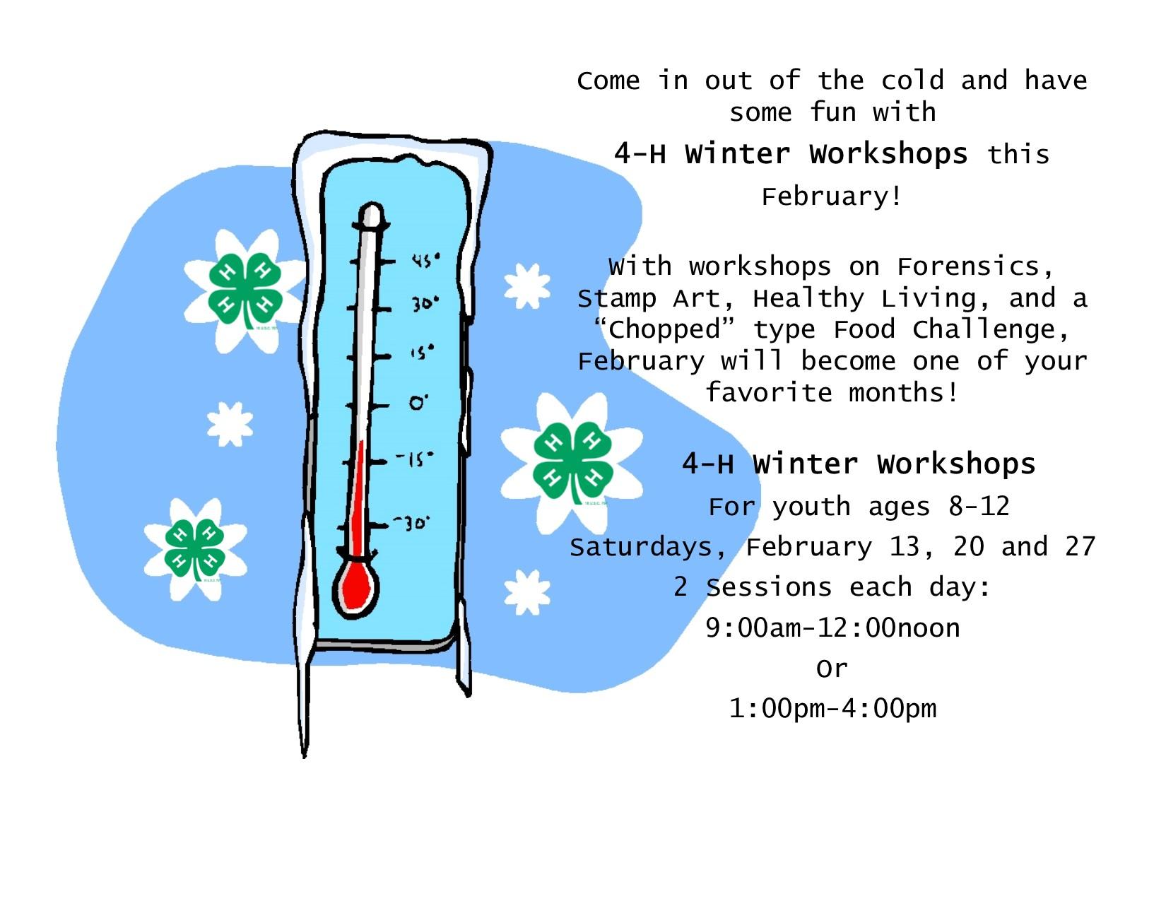 2016 Winter Workshops flyer(blog)