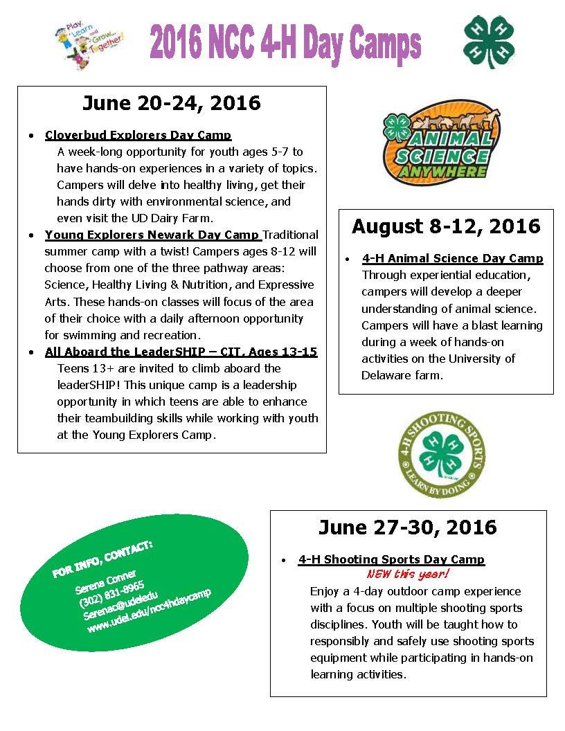 Camp Flyer for Blog