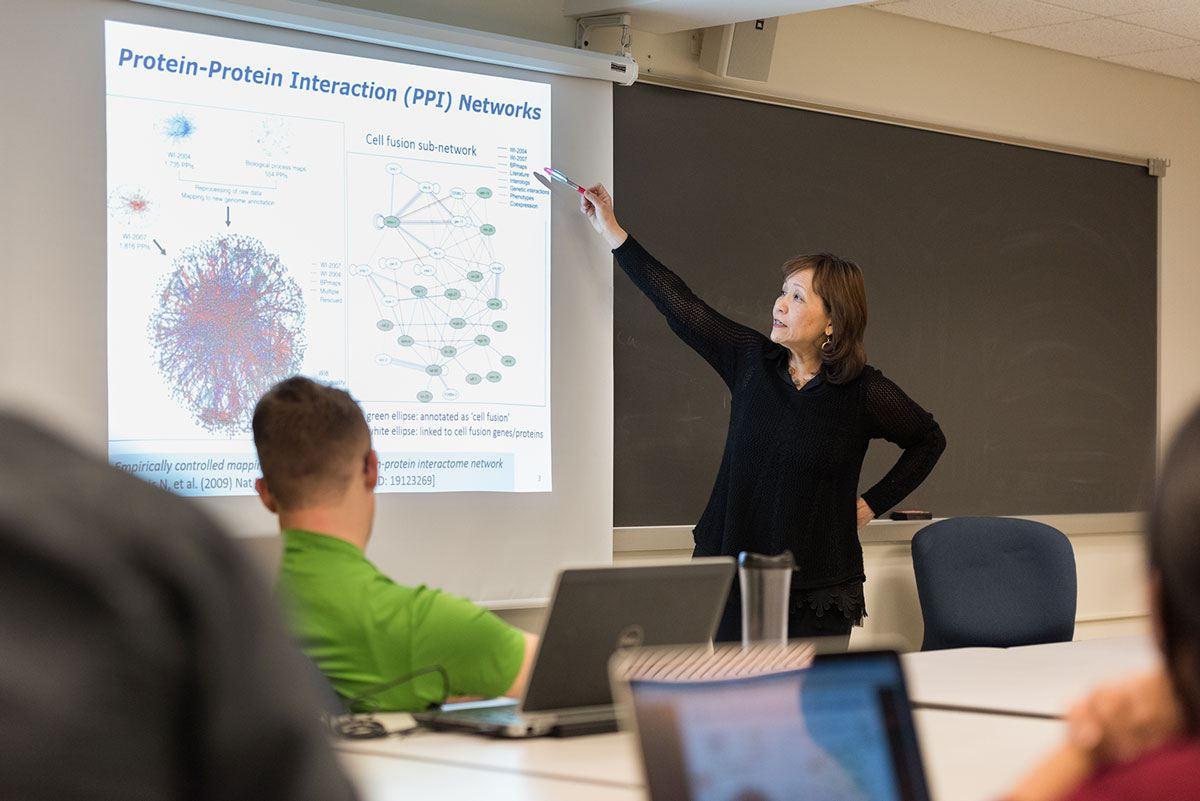 Bioinformatics Class