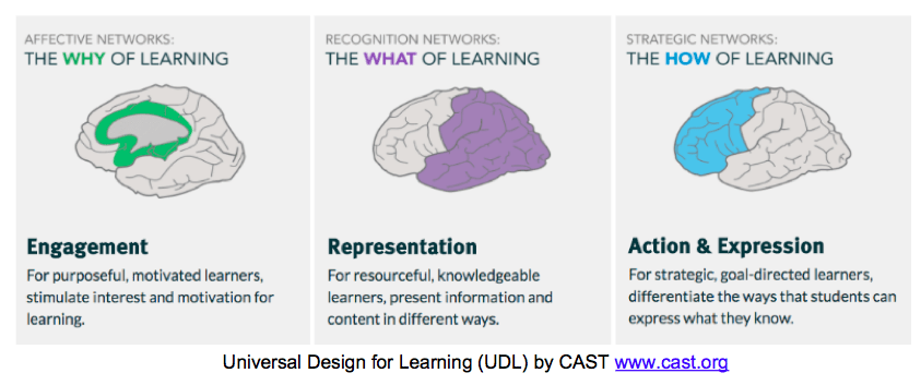 Three images of the human brain, color coding where different types of learning effect the human brain. Green highlights the central portion of the brain during the Why of learning, or during Engagement. Purple highlights posterior portion of the brain during the What of learning, or Representation. Blue highlights the anterior portion of the brain during the How of learning, or Action and Expression.