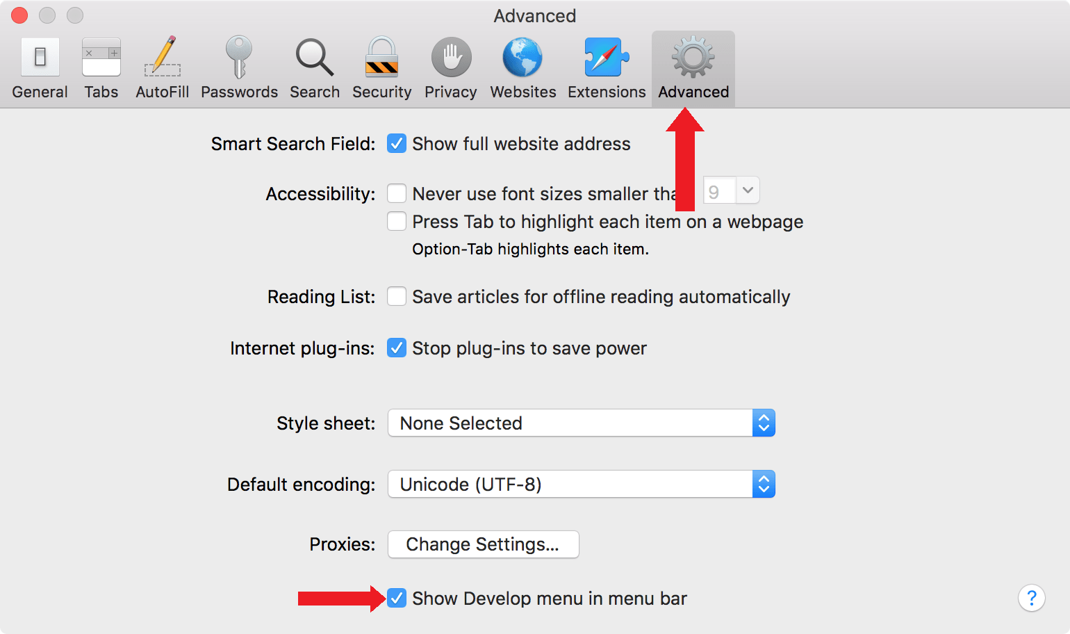 Prefences > Advanced menu in Safari