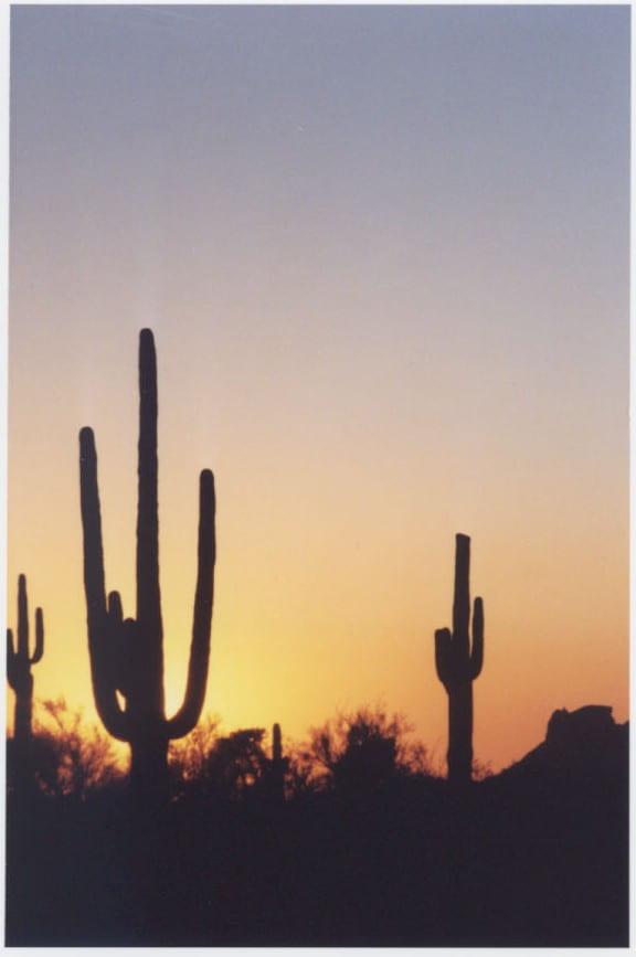 Sunset over the Arizona desert, Spring 2003